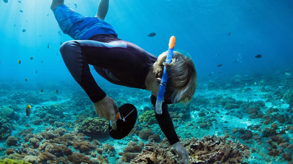 snorkel_Hotel_Emporio_Acapulco_gaceta_actividades