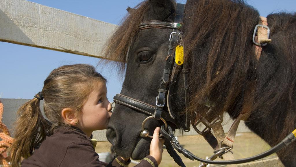 paseo_caballo_actividades_Nuevo_Vallarta_gaceta_Hoteles_Emporio